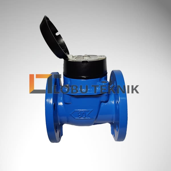 Water meter itron